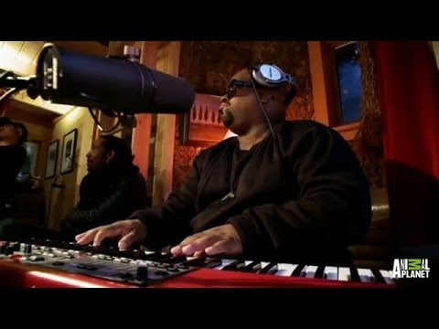 CeeLo Green Jams in Treehouse Studio | Treehouse Masters