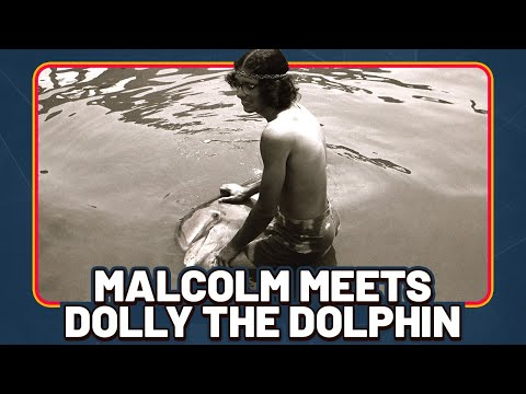 Man-On-Dolphin Sex Documentary Makes Big Splash At Film Festival