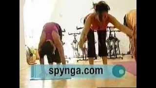 Spynga on Omni Television