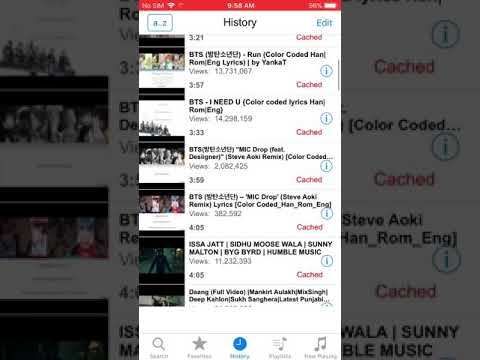 How to get imusic/iTube 2018 iOS 11 working