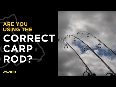 Are You Using The Correct Carp Fishing Rod?