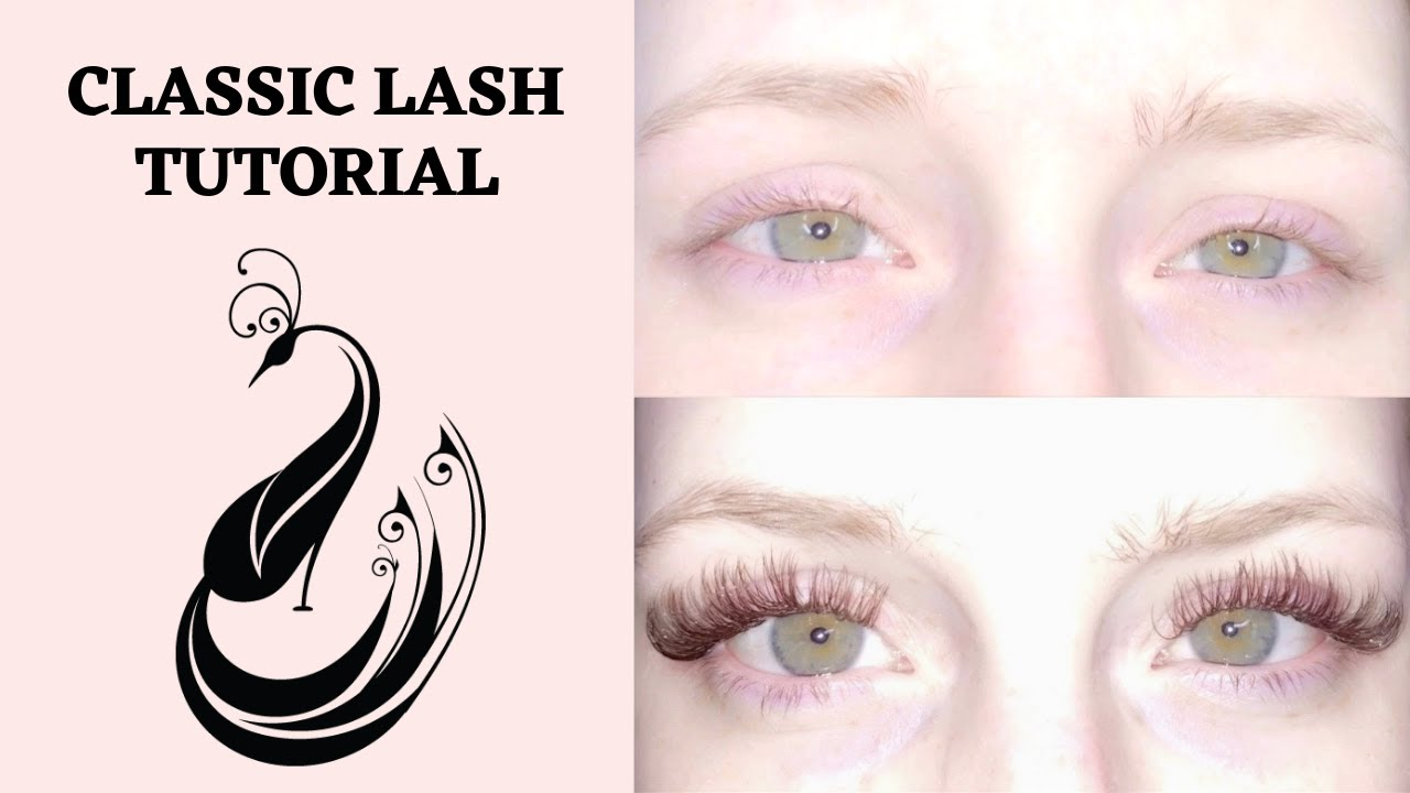 8ad626e9ca0 Brown Eyelash Extension Tutorial | Classic Full Set for Light or Blonde  Eyelashes and Fair Skin