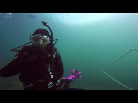 scuba open water certification dives Lake Phoenix 2018