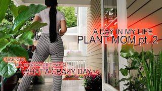ADIML| Plant Mom pt. 2