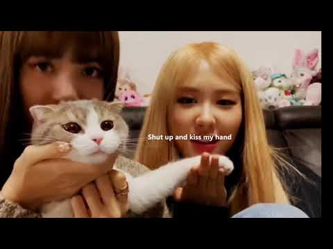 LiChaeng playing(annoying) with Lisa's cats for 6 minutes straight
