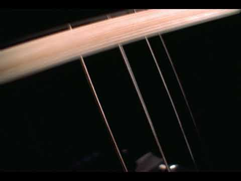 MN115 - FREE STOCK FOOTAGE - Musical Instrument