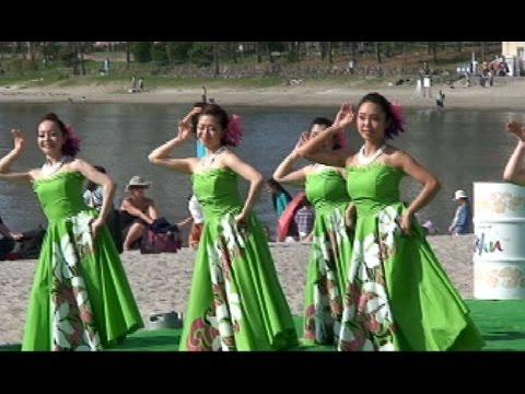 LOCO MOCO SUNSET FEEL THE MANA 2015  ⑩