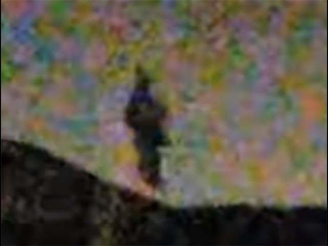 Varias personas ven un humanoide volador sobre California