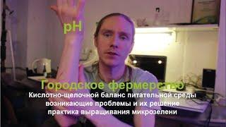 pH_Кислотно-щелочной баланс / #cityfarmerman / Городское фермерство