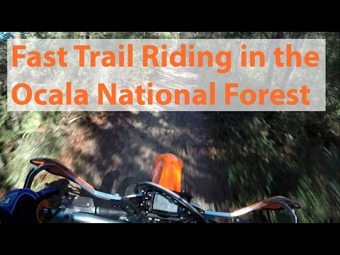 Fast Dirt Bike Trail Riding at the Florida Ocala Forests Delancy Loop