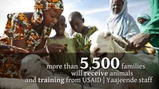 NCBA CLUSA and Partners Implement USAID 'Pass on the Gift' Project to Provide Livestock Grants