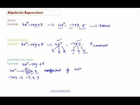 Adding Algebraic Expression Cbse Class 8th Math Videos And Notes4