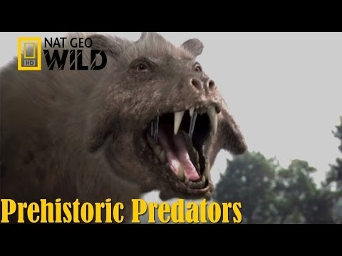 Best Documentary of All Time National Geographic Documentary - Prehistoric Predators: Killer Pig