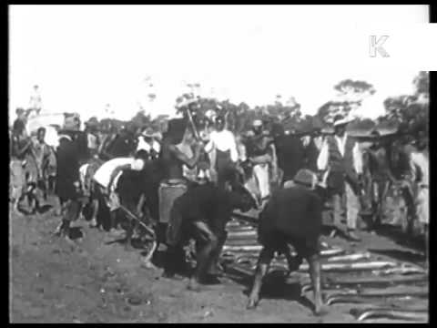 1930s South Africa, African Workers Dig Railway Track, Archive Footage
