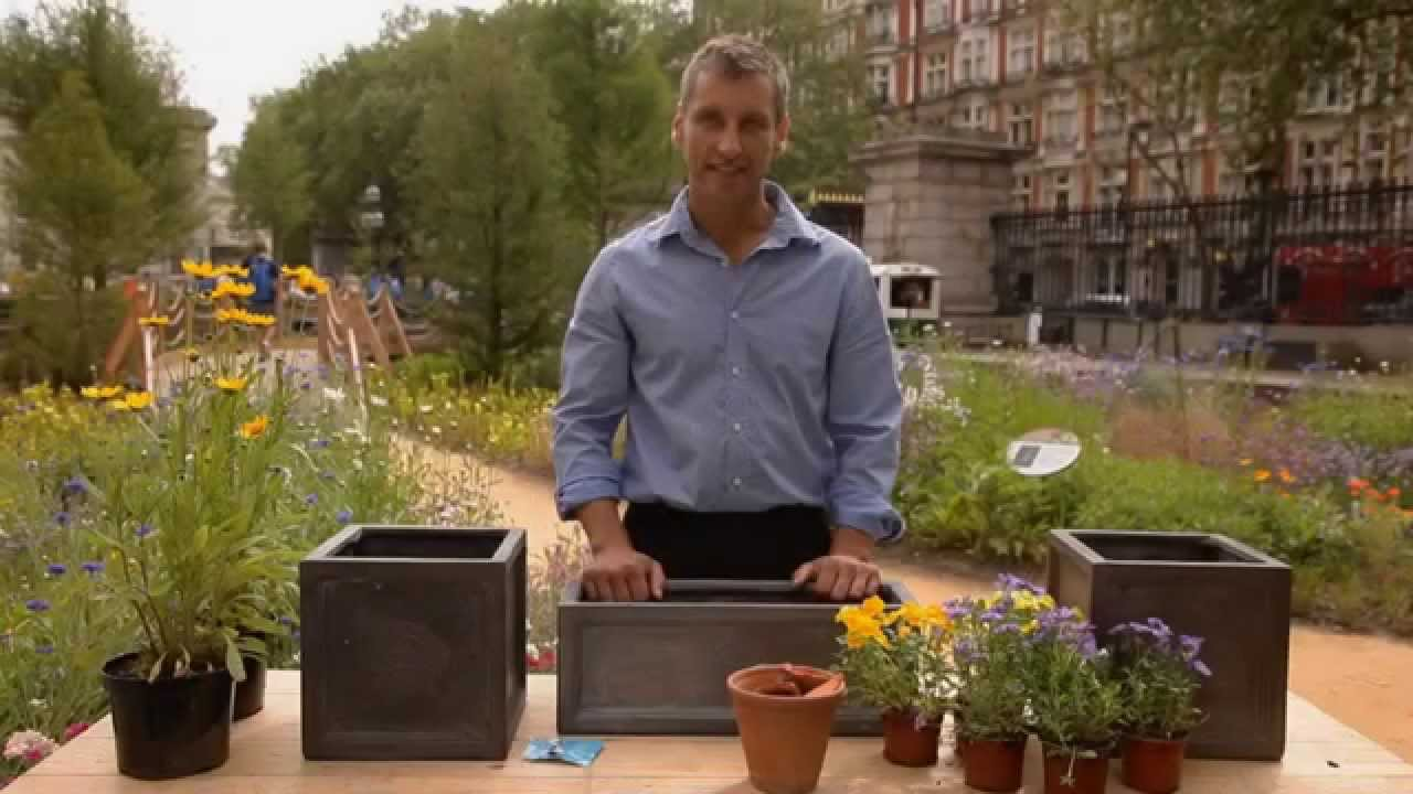 how to plant a window box flower how to plant window box youtube