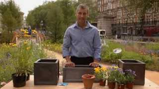North American Landscape: How To Plant A Window Box