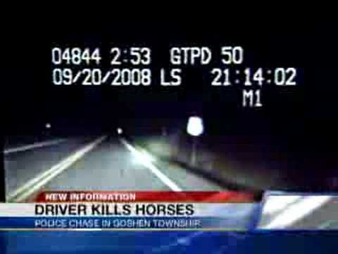 Police Chase Ends with Dead Horses
