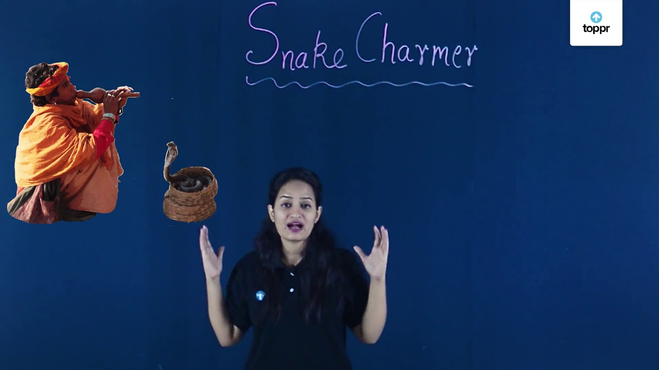 Story of a Snake Charmer: More about Snakes with Questions