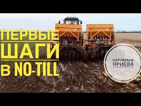 Первые шаги в No-Till Наримана Яриева (выращивание кориандра)