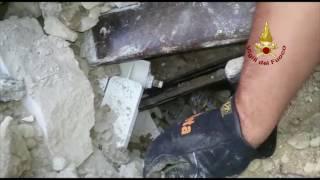 Terremoto: i Vigili del Fuoco di Prato e Firenze salvano un gattino
