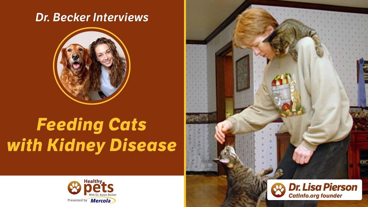 Dr Becker Interviews Dr. Pierson About