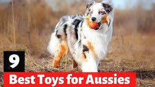 9 Best Dog Toys for Australian Shepherds
