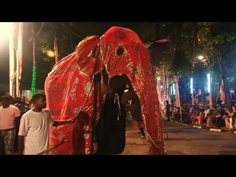 شاهد: مسابقة لملوك جمال الفيلة في سريلانكا  - نشر قبل 5 ساعة