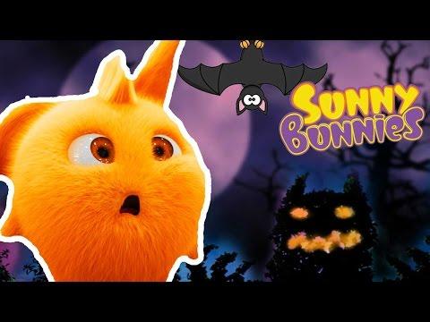 Halloween Cartoons for Children |  Sunny Bunnies CELEBRATE HALLOWEEN | Funny Cartoons For Children