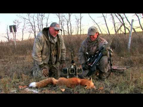 Hunting Coyotes and Foxes with Randy Anderson