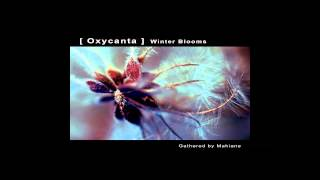 [ Oxycanta ] Winter Blooms - Gathered by Mahiane full album