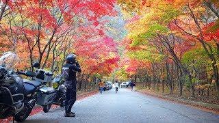 설악산 단풍투어,  Wonderful autumn fo…