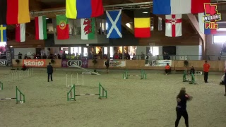 2017 World Agility Open Championships - Prize Giving thumbnail