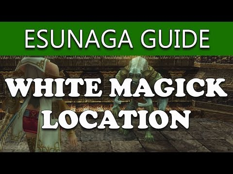 Final Fantasy XII The Zodiac Age ESUNAGA MERCHANT LOCATION - How To Get Esunaga Guide