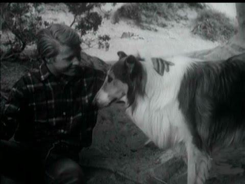"Lassie - Episode #416 - ""The Vigil"" - Season 12, Ep. 31 - 04/24/1966"