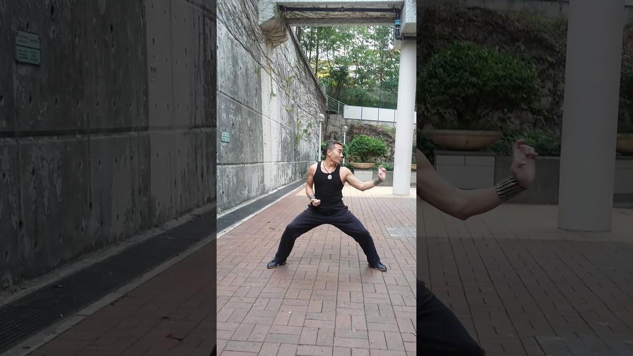虎鶴雙型拳 - YouTube