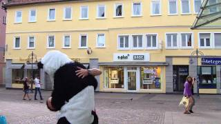 Panda goes wild in Heidenheim 1/2