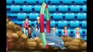 Игра шоу дельфинов 4. Шоу дельфинов 4 играть
