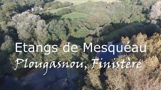 Etangs de Mesquéau  Plougasnou, Finistère