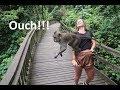 BITTEN In The Monkey Forrest!! | Ubud BALI