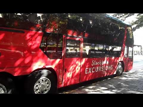Así ruge el motor de este bus