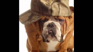 корм для собак go(, 2014-10-20T16:26:55.000Z)