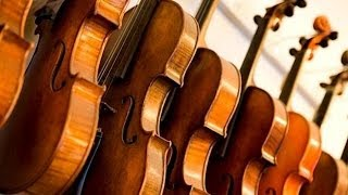 relaxing classical music for studying and concentration classical music for relaxation study