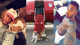 Flying With Coco And Roscoe! | Lewis Hamilton Snapchat Vlog