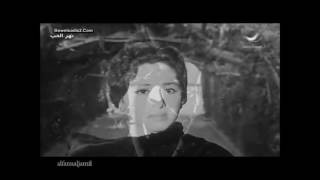 Sherine and Hossam Habib   Kol Maghanni   شيرين وحسام حبيب   كل ما أغني