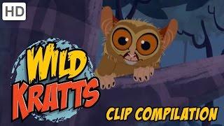 Wild Kratts - Clever Little Mammals Compilation