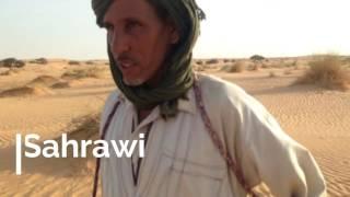 Bedouin journey through the Mauritanian Sahara (by camel)