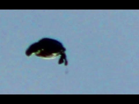 Over 15 Best UFO Sightings Of 2013, Special Report Top ... Ufo 2013