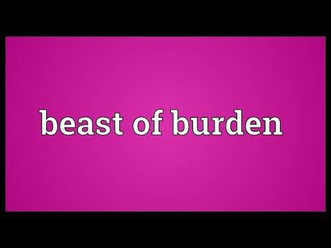 Beast of burden Meaning
