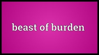 Beast of burden Meaning