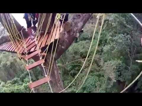 Canopy en Los Venados, EL Avila